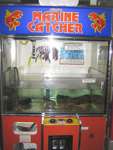 get-a-lobster-for-your-meal-from-a-vending-machine-in-japan-inside-this-arcade