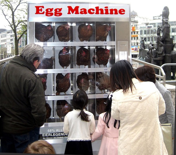 japan-also-have-vending-machines-that-sell-eggs-theyre-all-over-the-place