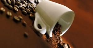 cafe5_0