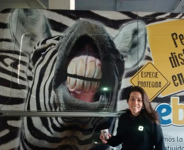 cari zebra